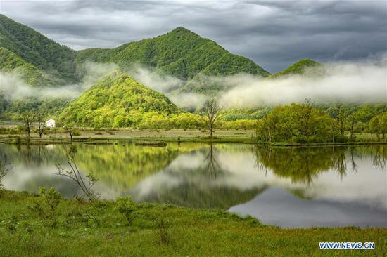 Scenery of Dajiu Lake wetland in Shennongjia, Hubei
