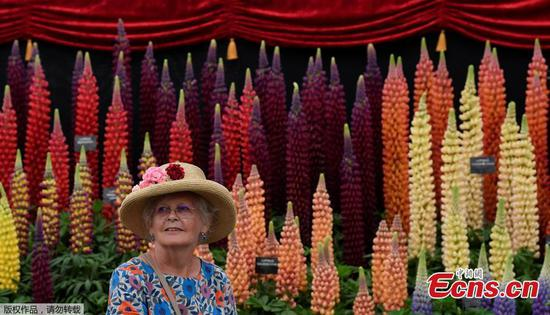 In pictures: RHS Chelsea Flower Show 2019