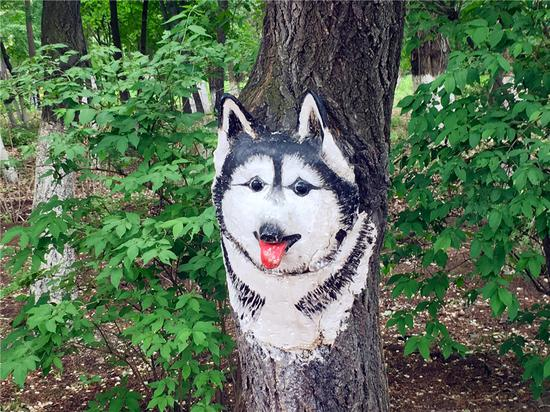 Animal paintings appear on trees in Changchun