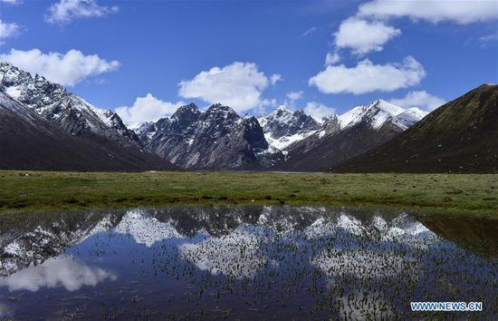 Scenery of Nianbaoyuze Mountain Scenic Resort in Qinghai