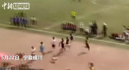 Stray dog crashes university��s sprint race and gets third place