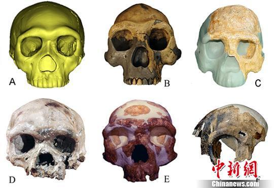 Chinese researchers discover 300,000-year-old ancient human fossils
