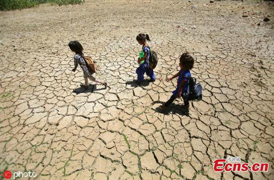 India reels as summer temperatures touch 50C