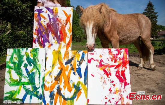 Art student teaches pony to paint for her final project