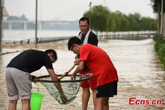 Residents catch fish on flooded street in southwestern city