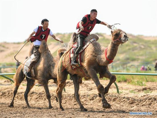 Highlights of desert Nadam Fair in China's Inner Mongolia