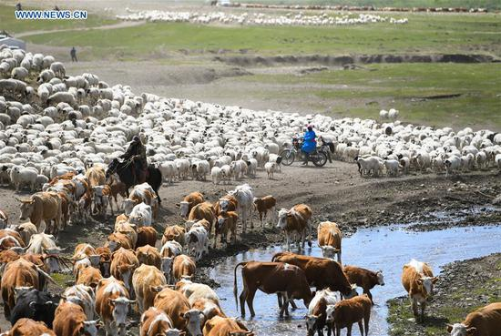 Nomadic migration on Ar Horqin grassland in China's Inner Mongolia