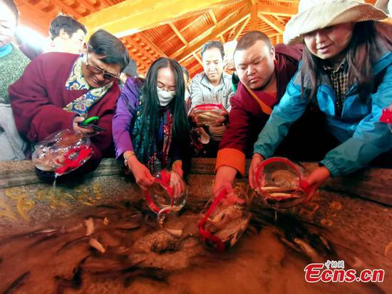 Tibetans release fish fry into Qinghai Lake