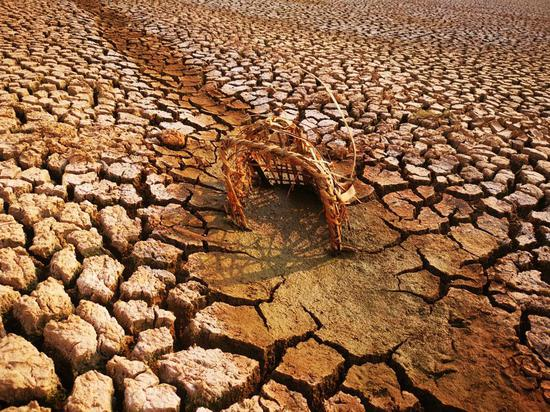 Severe drought in Yunnan leaves two million without water