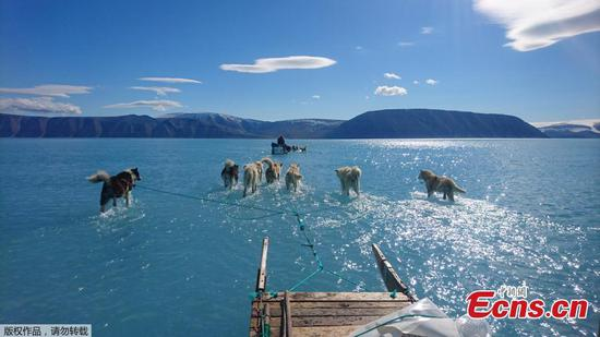 Photograph lays bare reality of melting Greenland sea ice