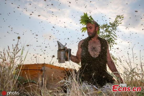 Turkish 'bee-man' aims for Guinness