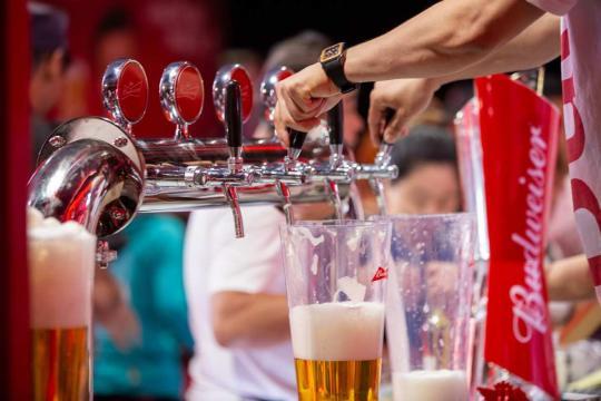 Bottoms up! Beer festival kicks off in Harbin