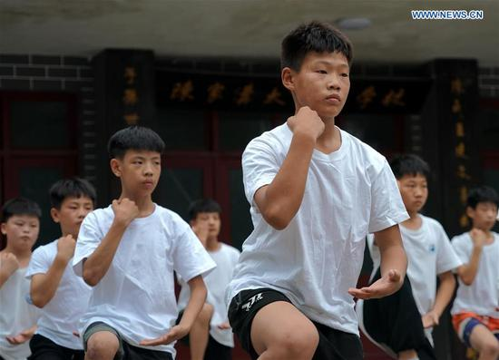 Young learners practise Taiji in Henan Province