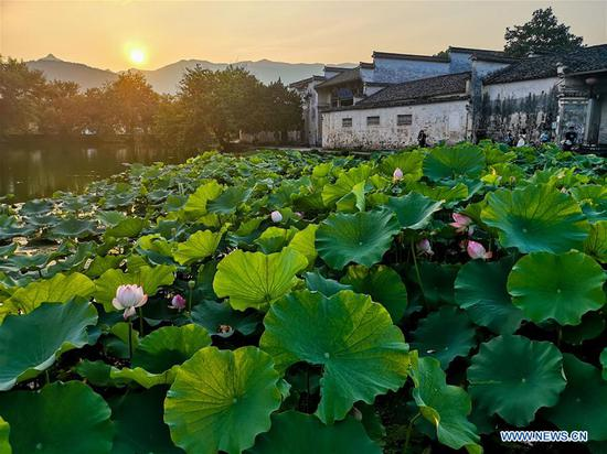 Scenery of Hongcun Village of Yixian County in Anhui