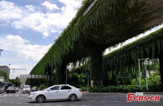 Lush plants cover city's overpass