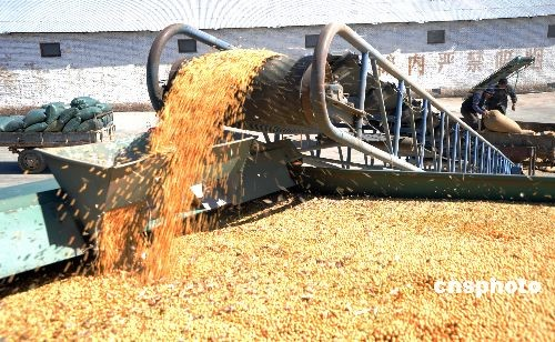 China's soybean yield sets new record