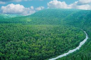 China creates 10 pilot national parks