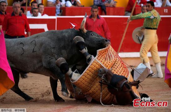 图片:西班牙圣佛明节斗牛