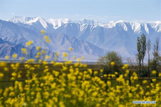 Xinjiang's Tajik receives 554,100 visits in H1