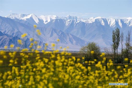新疆塔吉克斯坦(Tajik)在上半年接待了554,100人次