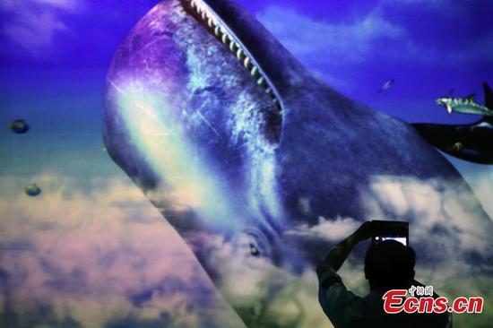 虚拟沉浸式数字艺术展在上海开幕