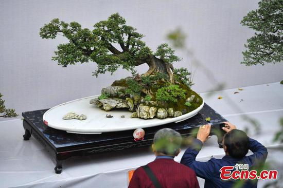 Miniature landscapes show in Kunming park