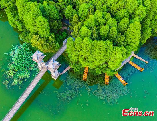 Spectacular view of Luoyan Island in Wuhan