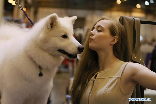 42nd Annual Houston World Series of Dog Shows held in U.S.