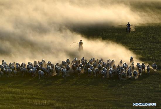 Horse lassoing in north China's Inner Mongolia