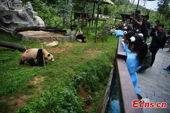 Children celebrates panda's birthday in Yunnan