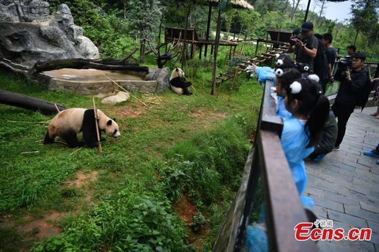 孩子们在云南庆祝熊猫生日
