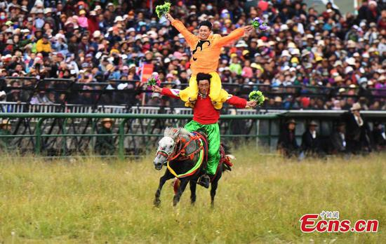873 horses in 6-day Gesar racing festival