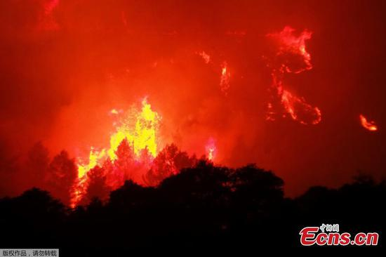 Strong winds fan wildfire raging in southern France