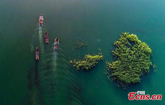 Fishing season starts on Xinjiang's Ulungur Lake