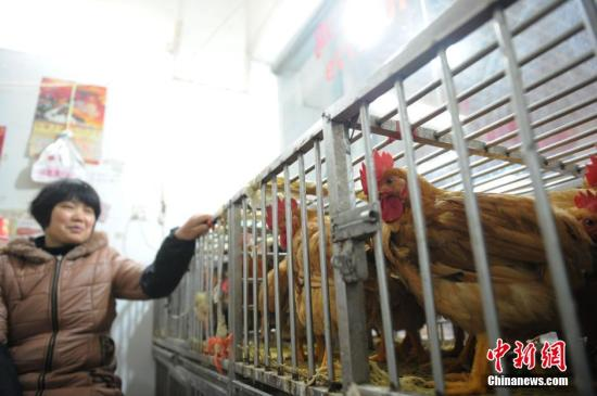 Beijing reports H5N6 flu case