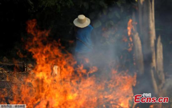 亚马逊燃烧:巴西报告森林大火创纪录