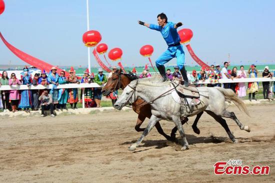 Stunning horse show in Gansu