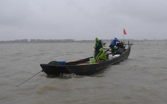 Annual summer fishing ban ends in Zhejiang