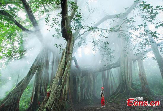 Dehong prefecture in Yunnan pilots FTZ