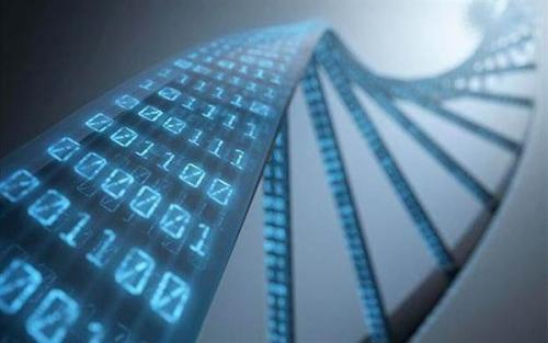 DNA breakthrough helps identify lost WWII heroes