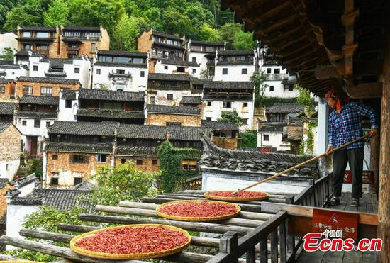 Autumn charms draw visitors to Huangling Village