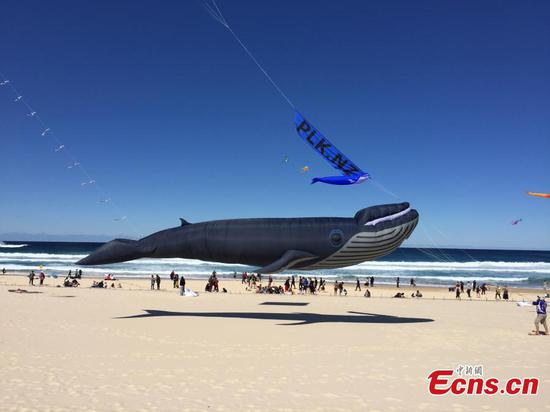 Australia's largest kite festival opens on Bondi Beach