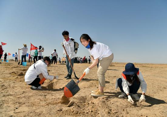 Volunteers plant trees sponsored by the Ant Forest initiative in a gobi desert in Dunhuang City, northwest China's Gansu Province on April 22, 2019. (Xinhua/Xu Kangping)