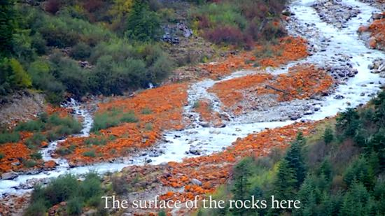 Amazing China Episode 5:Scarlet rocks under glaciers