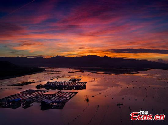 Xiapu, the most beautiful mudflats in China