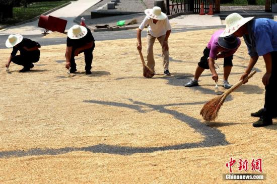 China at its best period on food security: official