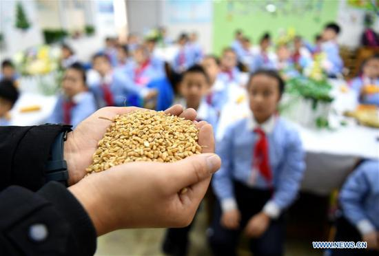World Food Day marked at primary school in Shijiazhuang, N China's Hebei