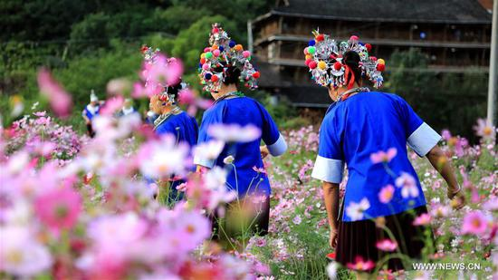 Scenery of galsang flowers in south China's Guangxi