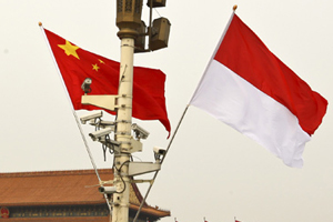 Chinese vice president visits Indonesia for closer ties