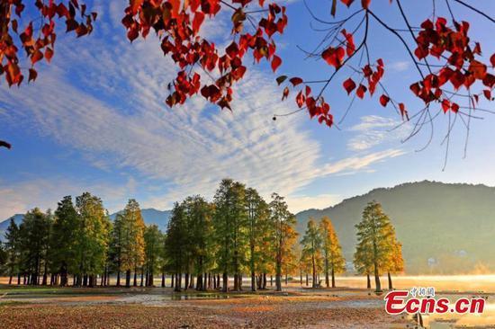 Picturesque Qishu Lake in morning glow